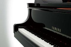 c1x-feature-pianist