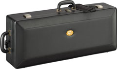 lightweight case